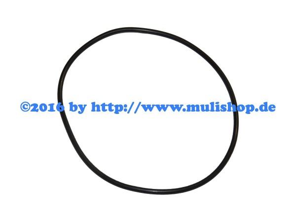 O-Ring Dichtring 102 x 3