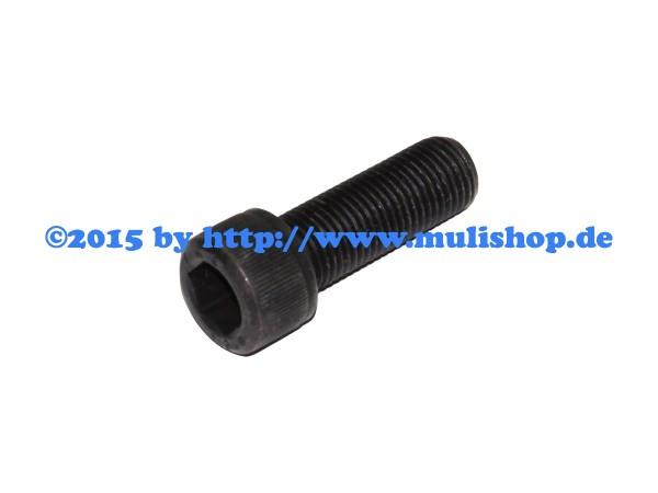 Zylinderschraube für Bremssattel M26