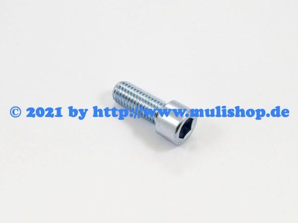 Zylinderschraube M12x30 Schwungradgehäuseflansch M25.2, M26.0