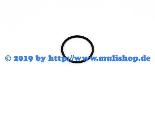 O-Ring für Einspritzventil (Injektor) M30-E4/E5 M31